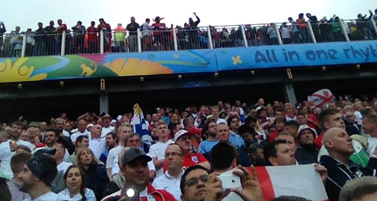 dedicated fans